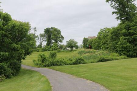 New York Golf 012
